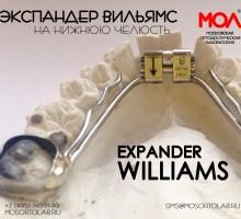 Экспандер Вильямс (Williams)