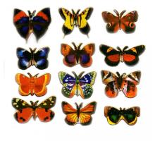 #13 Бабочки